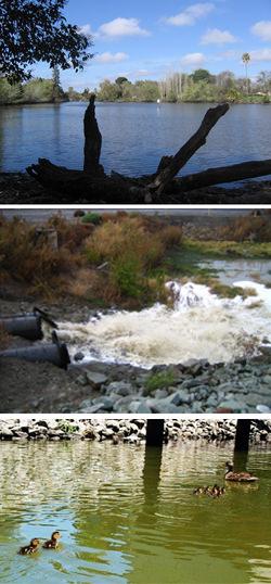 Condor Storm Water